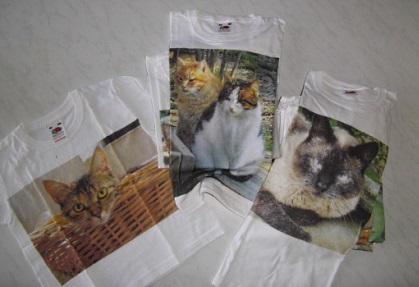 tshirt-gatti